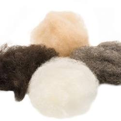 Buy Organic Wool Fleece - 4 Earth Tones 100g NEW in AU Australia.