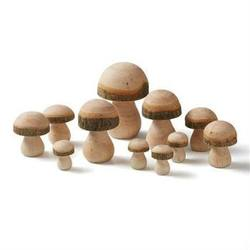 Buy Wooden Toadstools/Mushrooms Assorted Pack 11pcs in AU Australia.