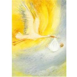 Buy Postcards - Stork Carrying Baby 5 pk in AU Australia.