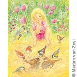 Buy Postcards- Look at the Little Birds 5 pk in AU Australia.