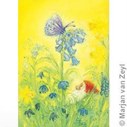 Buy Postcards- Spring Butterfly 5 pk in AU Australia.