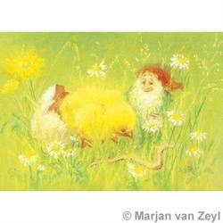 Buy Postcards- Little Chicken 5 pk in AU Australia.