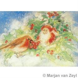 Buy Postcards- Winter Robin 5 pack in AU Australia.