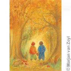 Buy Postcards- Autumn Forest 5 pk in AU Australia.