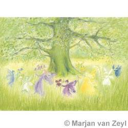 Buy Postcards- Fairy Dance in Spring 5 pack in AU Australia.