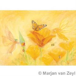 Buy Postcards- Sylphs Help the Flowers 5 pack in AU Australia.