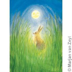Buy Postcards- Hare and Moon 10 pack in AU Australia.
