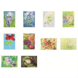 Buy Postcards 'Flowers'-  assorted pk of 10 by Marjan van Zeyl in AU Australia.