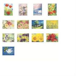 Buy Postcards 'Flowers'-  assorted pack of 13 LARGE postcards by Marjan van Zeyl (Do not fit backing sets) in AU Australia.