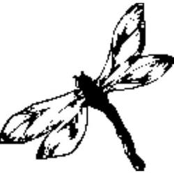 Buy Craft Stamp - Dragonfly in AU Australia.