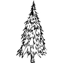 Buy Craft Stamp - Fir Tree 024 SAVE 30% in AU Australia.